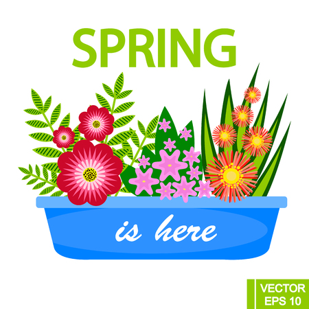 Flower pot with different colorflowers, spring concept. Vector illustration for banners, posters, menu, spring and summer sales, stickers, etc.