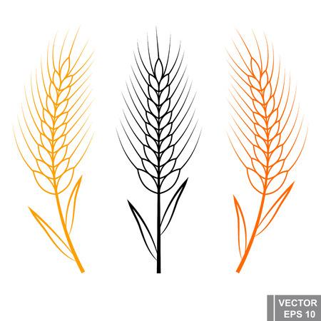 Weizenkeime Flache Darstellung. Ikone getrennt auf weißem Hintergrund. Vektorgrafik