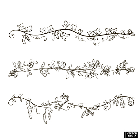Vector image. A set of patterns with scrolls and floral ornaments. Simple plant curls. Patterns for underlining with apples, cucumbers and peas. Separators for text Vettoriali