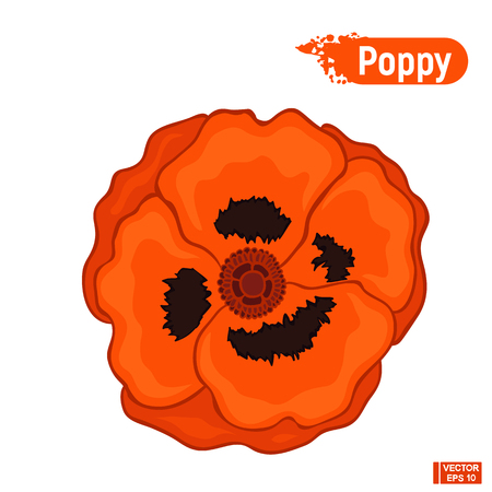 Vector image. A blossoming red poppy flower. Day of Memory Symbol