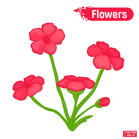 Vector image of bright color sketch pink abstract flowers