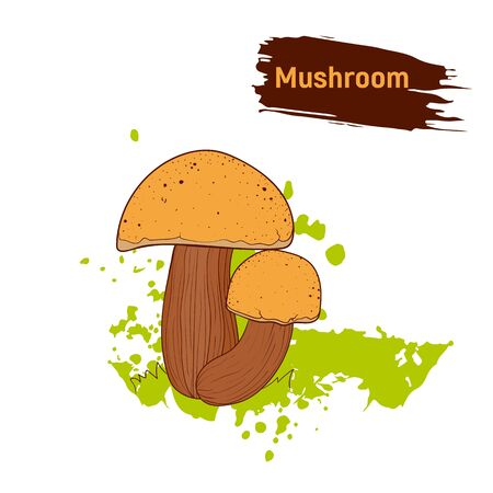 Coloured sketch of forest edible mushrooms. Imitation of color ink splashes and blots