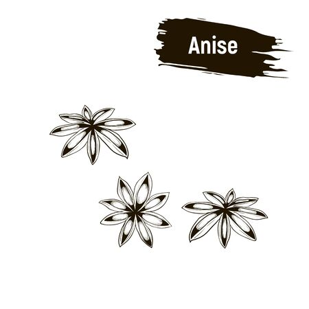 Outline image, anise. Spice, iImitation of ink.