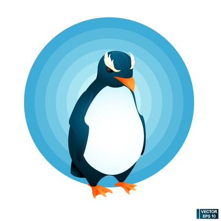 Vector cartoon bird icon. Crested Penguin. for your design.