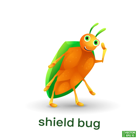 Vector image of an insect. Cute cartoon . Green shield bug.