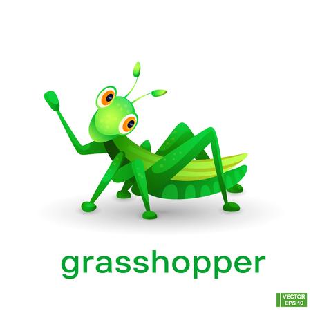Vektorbild eines Insekts. Niedliche grüne Zeichentrickfigur Heuschrecke.