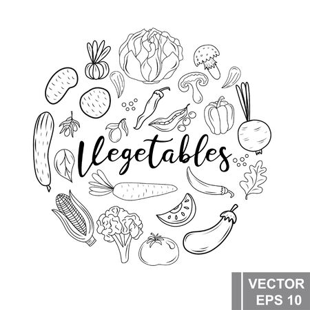Hand drawing. Vegetables. Set. For your design. Healthy eating Ilustracja