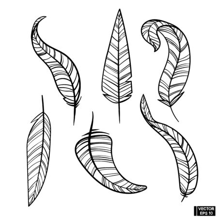 Set of black and white feathers in hand-drawn style