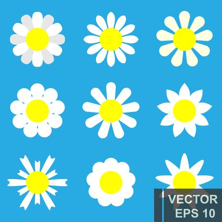 Camomile flowers set. Flat style. White petals. For your design.