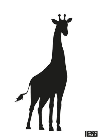 Black beautiful rearing Giraffe fine vector silhouette. Over white
