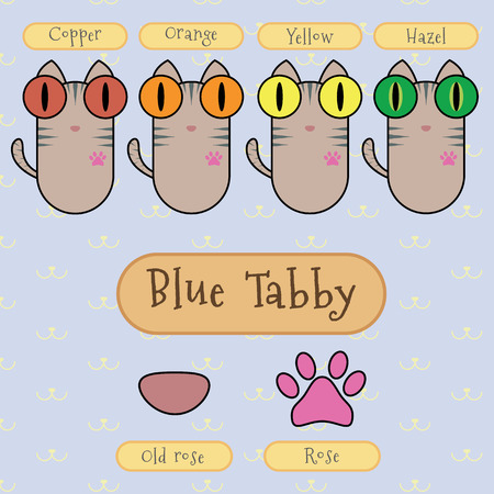 ojo de gato: Infograf�a espect�culo detalle de gato atigrado azul, color de ojos, color de la nariz y el color del pie.