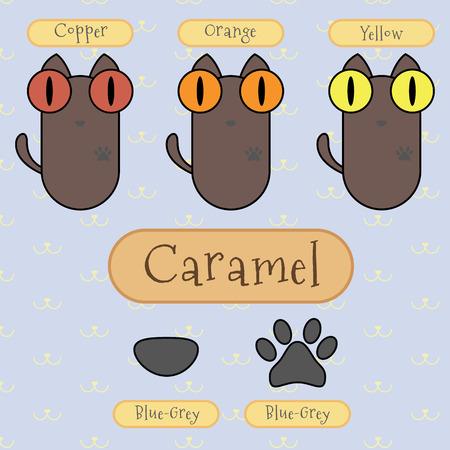 ojo de gato: Infograf�a espect�culo detalle de caramelo gato color, color de ojos, color de la nariz y el color del pie.