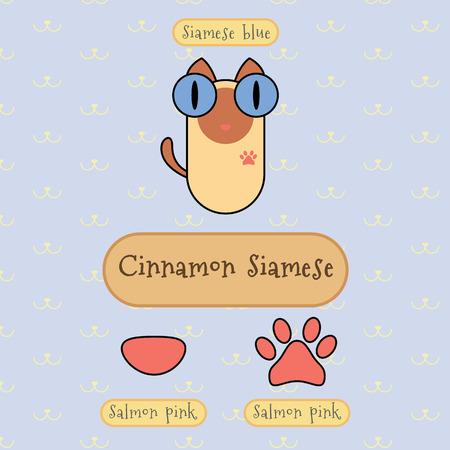 ojo de gato: Infograf�a espect�culo detalle de canela gato siam�s, color de ojos, color de la nariz y el color del pie.