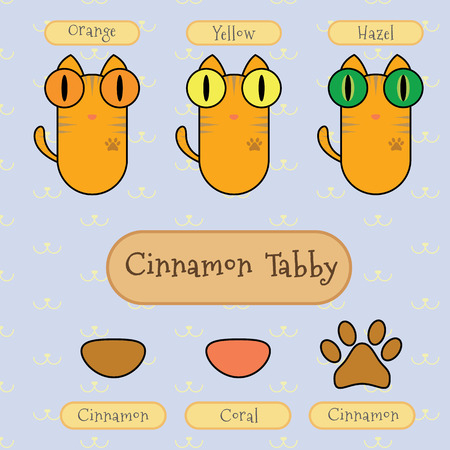 tabby cat: Infographic show detail of cinnamon tabby cat, eye color, nose color and foot color. Illustration