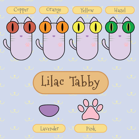 differentiate: Infographic show detail of lilac tabby cat, eye color, nose color and foot color. Illustration