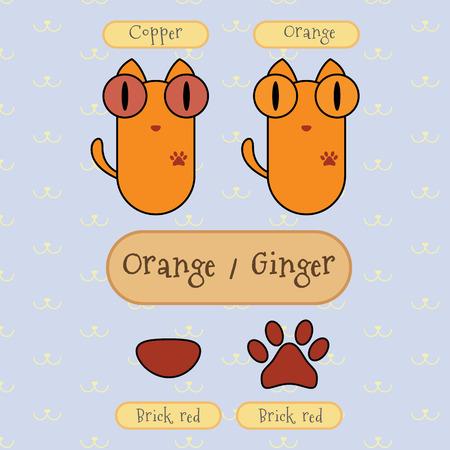 ojo de gato: Infograf�a espect�culo detalle de naranja gato de color, color de ojos, color de la nariz y el color del pie.