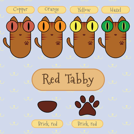 differentiate: Infographic show detail of red tabby cat, eye color, nose color and foot color.