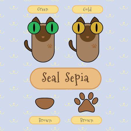 ojo de gato: Infograf�a espect�culo detalle de gato sepia sello, color de ojos, color de la nariz y el color del pie.