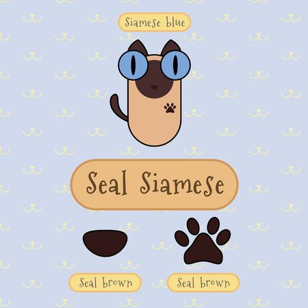 siamese cat: Infographic show detail of seal siamese cat, eye color, nose color and foot color.