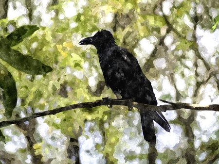 corvus: The crow on the tree looking for something.Watercolor illustration by computer. Stock Photo