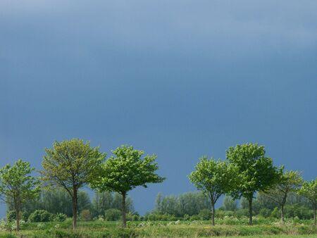 dark clouds over a field photo