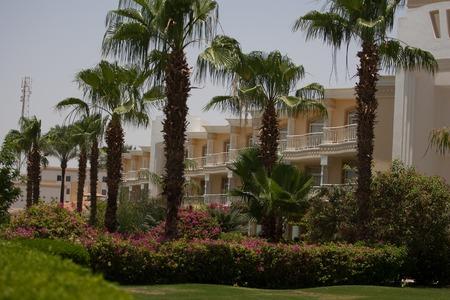Resort Palm Royale