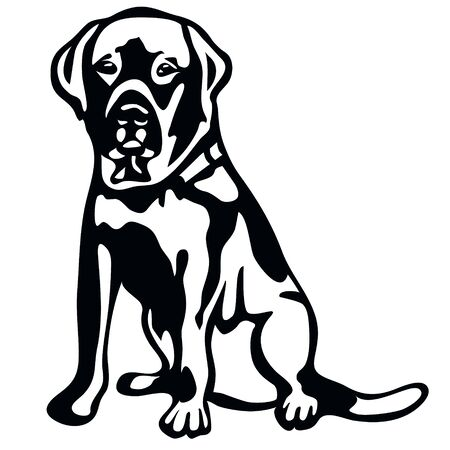 vector drawing of a dog labrador in profile, a cliche for cutting on a white isolated background