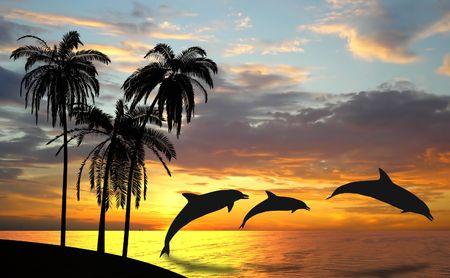 Delfines cerca de Hawai