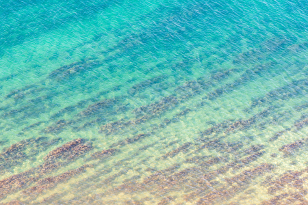 Blue sea texture with lines of seaweed Stock Photo