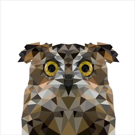 animal eyes: Artistic portrait of a gray owl of triangles Illustration