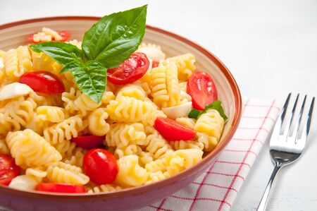 nudelsalat: Pasta salad with tomatoes, olives, mozzarella and basil Lizenzfreie Bilder