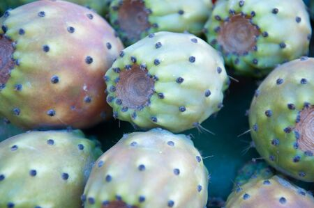 prickly pear: Several fruits of prickly pear from italy