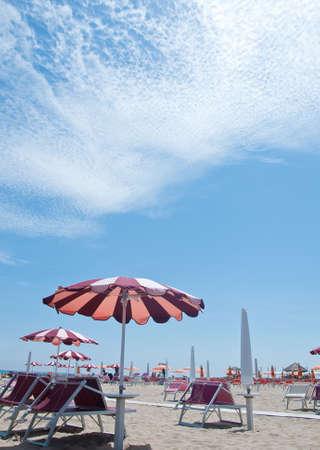 establishment: beach chairs and umbrellas on the beach in a bathing establishment