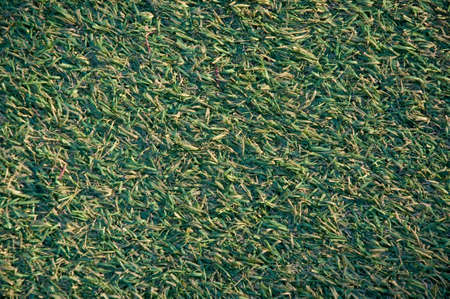 artificial: square of green artificial grass at sunset Stock Photo
