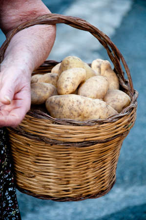 containing: hands holding a basket containing potatoes