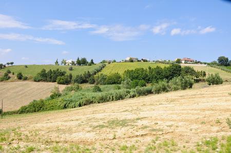 montepulciano: the beautiful hills around teramo which produces the Montepulciano DAbruzzo