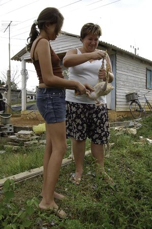 18 april 2007-pinar del rio-cuba- Girls cleaning a chicken in the vinales campaign, cuba Sajtókép