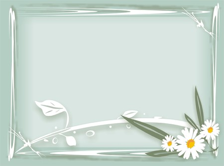 Chamomiles and drops. Background (vector) Vector
