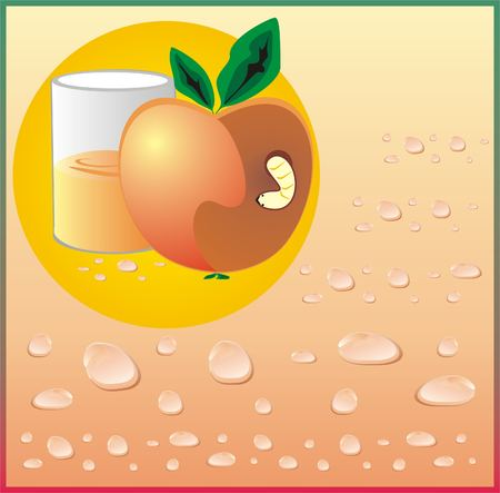 fruit worm: Apple and glass of juice. A worm spoiled an fruit. Vector Illustration