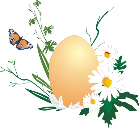 Egg, chamomiles and insect. Easter. Vector Vector