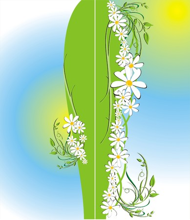 Floral decorative background for holiday�s card. Chamomiles. Vector Vector