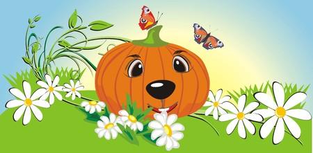 Pumpkin among chamomiles and butterflies. Vector Vector