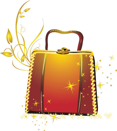 womanish: Womanish bag in a gift. Vector Illustration