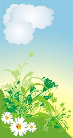 warmly: Chamomiles. Spring composition. Vector