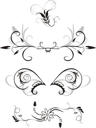 Elements of floral ornaments for design. Vector Vector