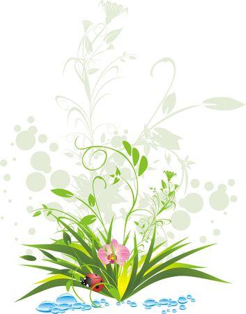 Grass, water and ladybird. Vector Stock Vector - 5131783