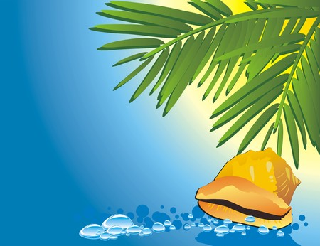 Cockleshell among the water and branches of palms. Vector Stock Vector - 5275842