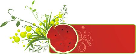 treating: Watermelon and sprigs. Banner. Vector Illustration