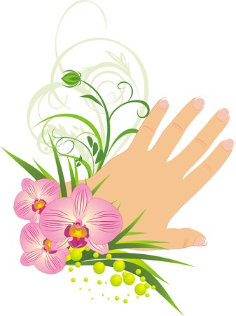 french manicure: French manicure and beautiful orchids. Vector