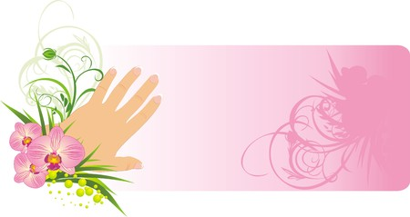 french manicure: French manicure and beautiful orchids. Background for card. Vector